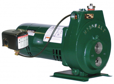 Convertible Jet Pump-8630