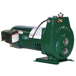 Convertible Jet Pump-8631