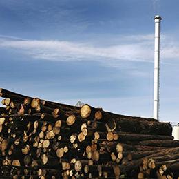 Biomass handling systems