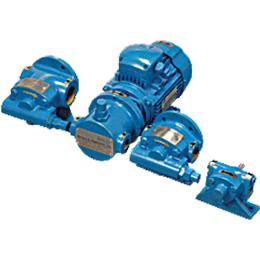 Rotary Trochoidal Gear Pump