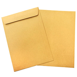 BROWN KRAFT ENVELOPE