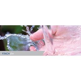 Finch Fine