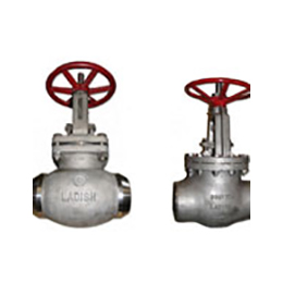stop-check valves