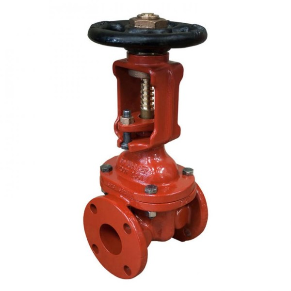 OS&Y Valve 2-3 Flanged Ends
