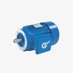 Industrial Gear Motors
