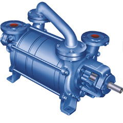 Two Stage Vacuum Pumps - VWS II