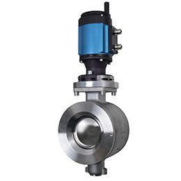 Soft seated control valve