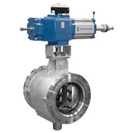 Ball segment valves
