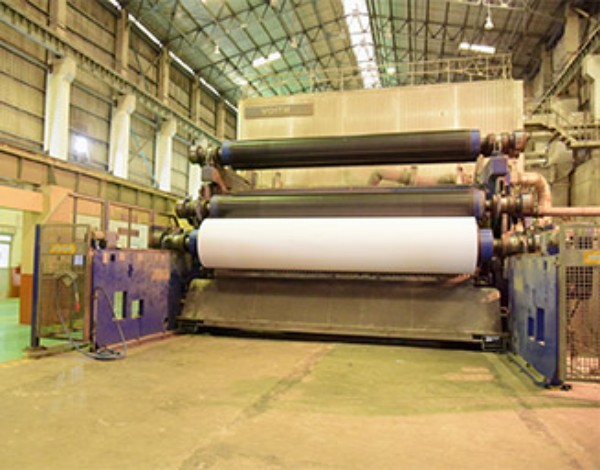 Printing & Writing Paper